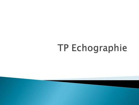 TP Echographie.