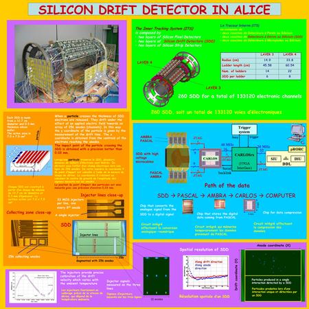 Z SILICON DRIFT DETECTOR IN ALICE When a particle crosses the thickness of SDD electrons are released. They drift under the effect of an applied electric.