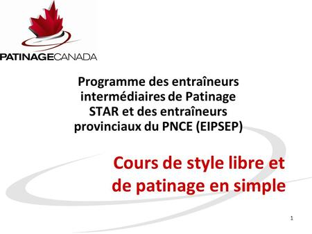 Cours de style libre et de patinage en simple