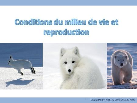 Conditions du milieu de vie et reproduction