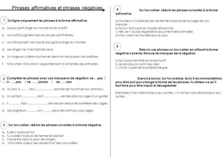 Phrases affirmatives et phrases négatives