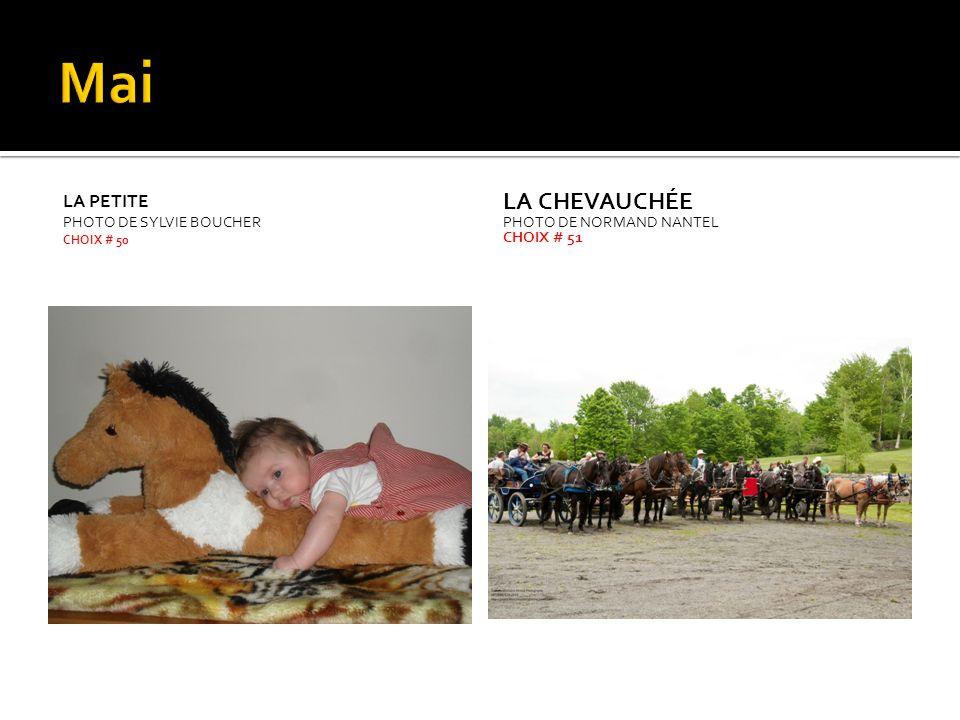 LE CANADIEN PHOTO DE SYLVIE SHAW CHOIX # 60 LA CAVALIÈRE PHOTO DYVON GERVAIS CHOIX # 61