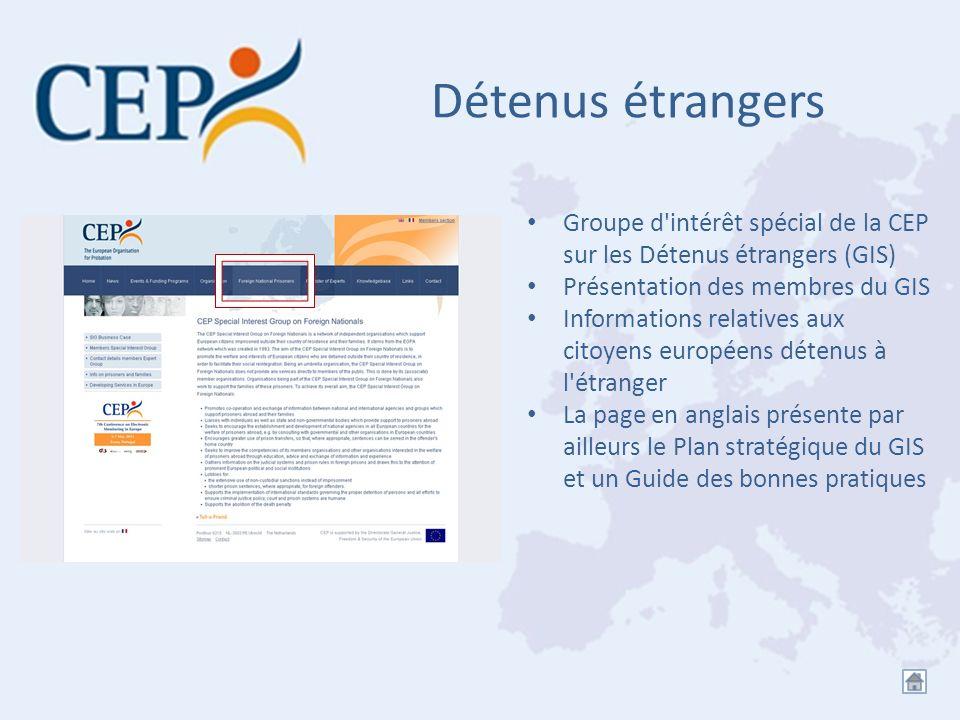 Détenus étrangers Groupe d intérêt spécial de la CEP sur les Détenus étrangers (GIS) Présentation des membres du GIS.