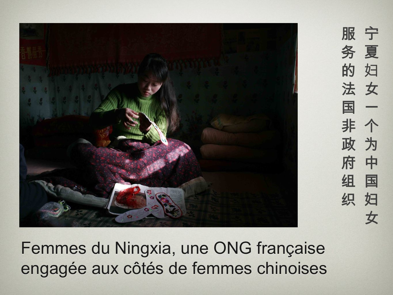 服务的法国非政府组织 宁夏妇女一个为中国妇女 Femmes du Ningxia, une ONG française engagée aux côtés de femmes chinoises