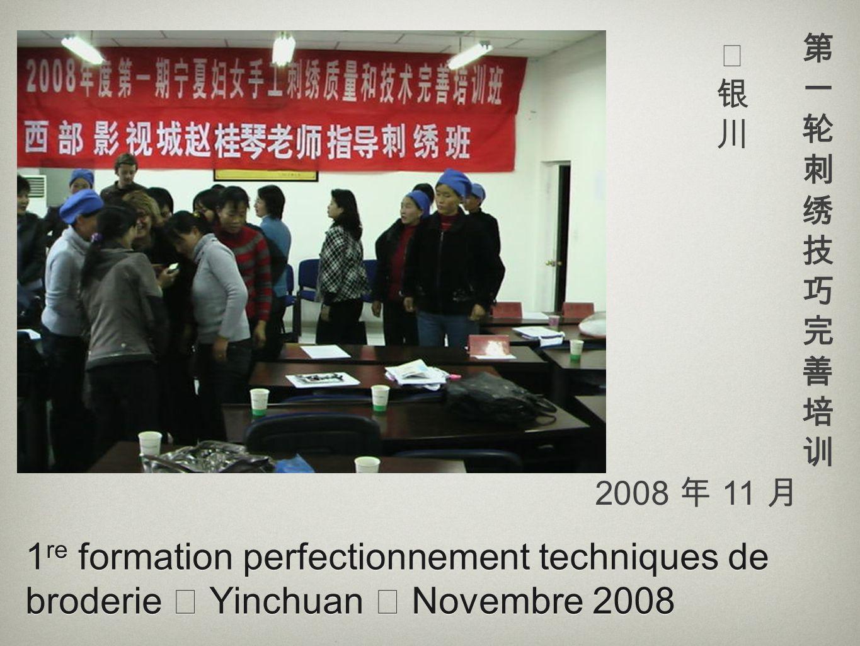 第一轮刺绣技巧完善培训 银川. 2008 年 11 月.