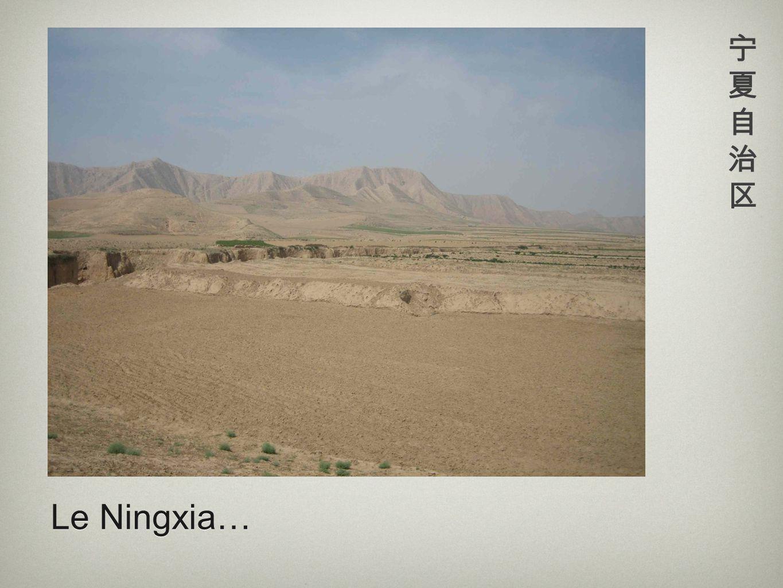宁夏自治区 Le Ningxia…