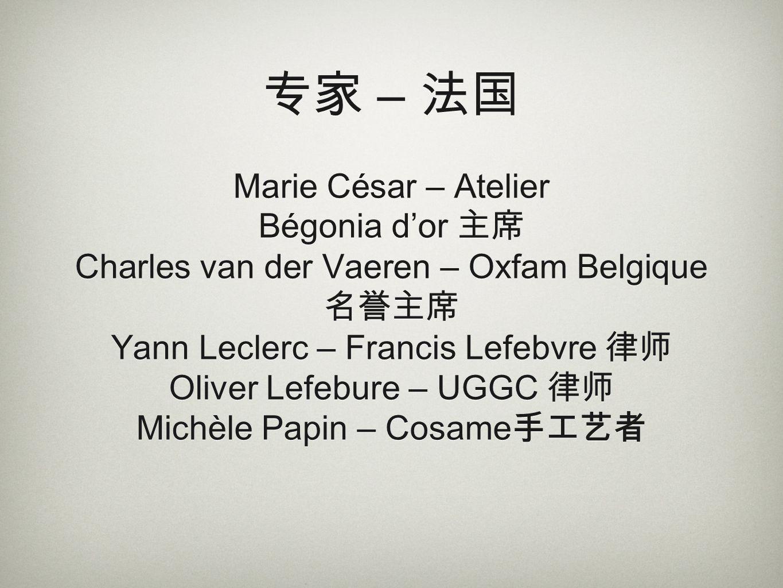 专家 – 法国 Marie César – Atelier Bégonia d'or 主席 Charles van der Vaeren – Oxfam Belgique 名誉主席 Yann Leclerc – Francis Lefebvre 律师 Oliver Lefebure – UGGC 律师 Michèle Papin – Cosame手工艺者