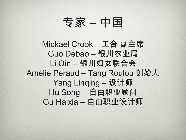 专家 – 中国 Mickael Crook – 工合 副主席 Guo Debao – 银川农业局 Li Qin – 银川妇女联合会 Amélie Peraud – Tang'Roulou 创始人 Yang Linqing – 设计师 Hu Song – 自由职业顾问 Gu Haixia – 自由职业设计师