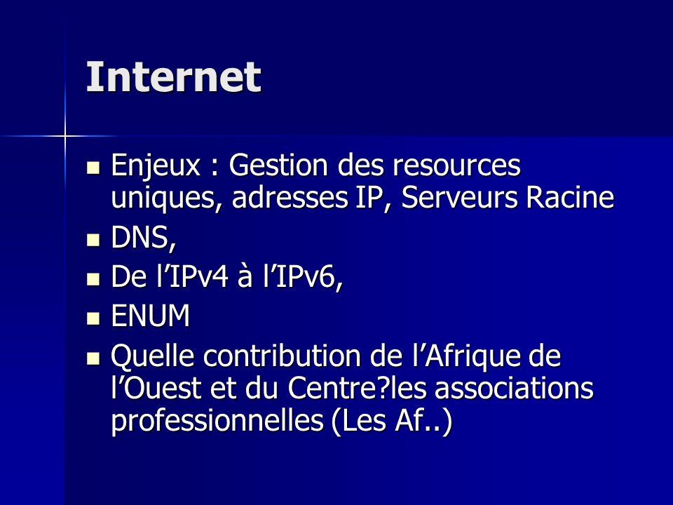 Internet Enjeux : Gestion des resources uniques, adresses IP, Serveurs Racine. DNS, De l'IPv4 à l'IPv6,