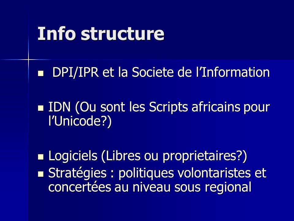 Info structure DPI/IPR et la Societe de l'Information