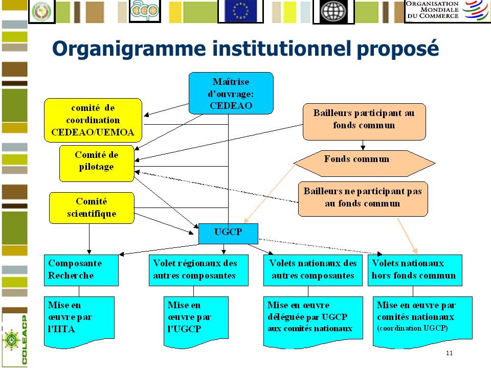 Organigramme institutionnel proposé