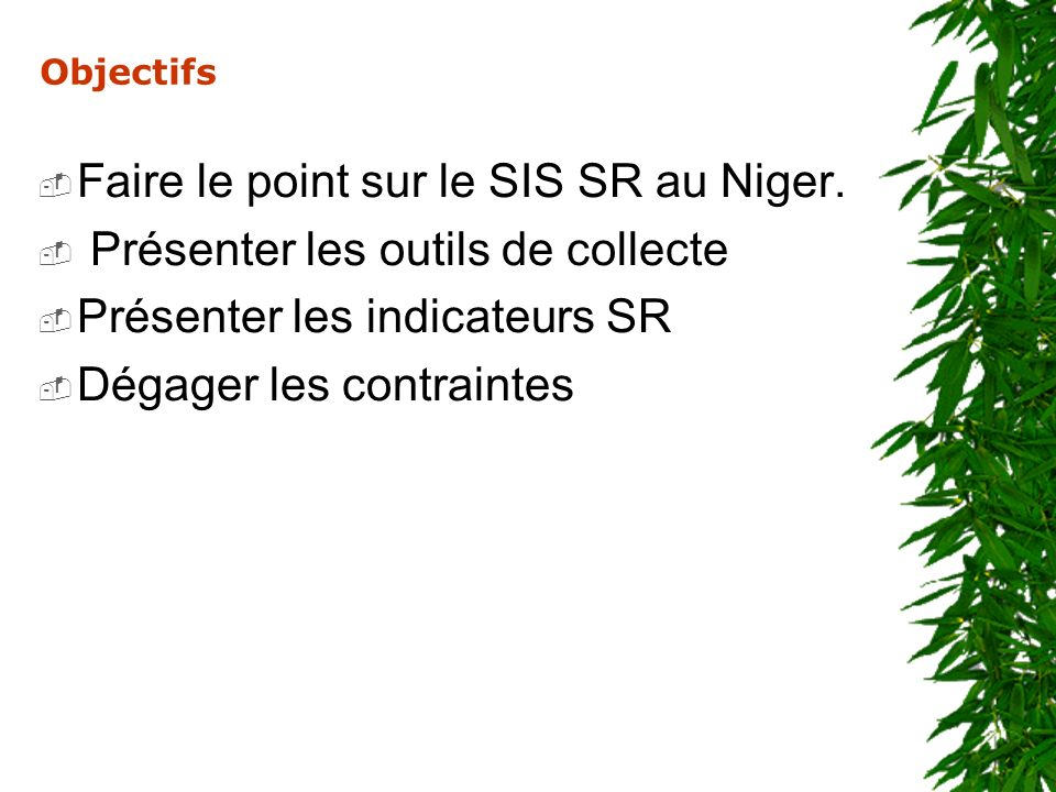 Faire le point sur le SIS SR au Niger.
