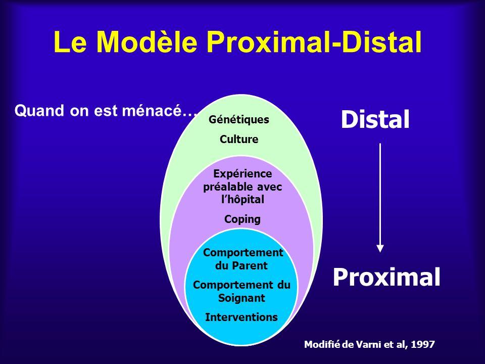 Le Modèle Proximal-Distal