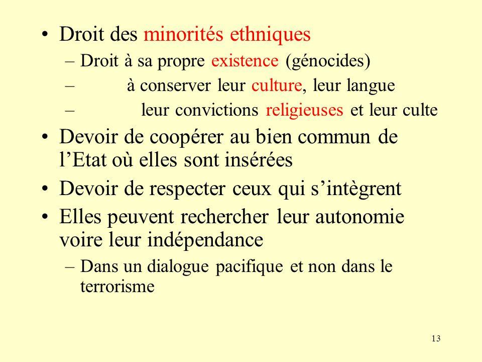 Droit des minorités ethniques