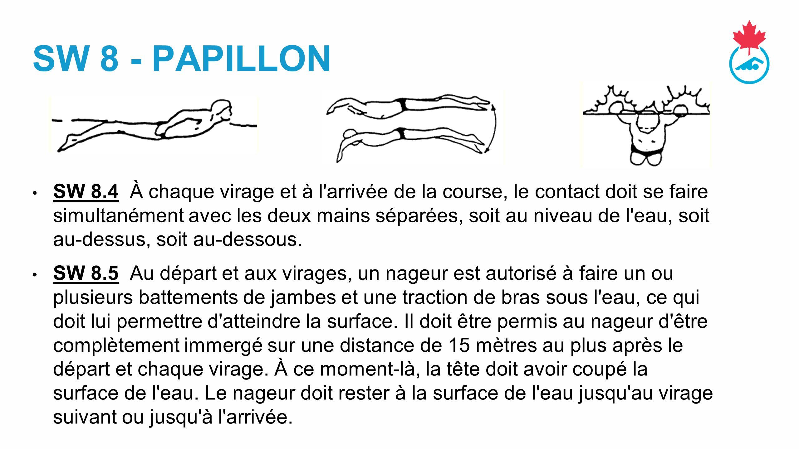 SW 8 - PAPILLON