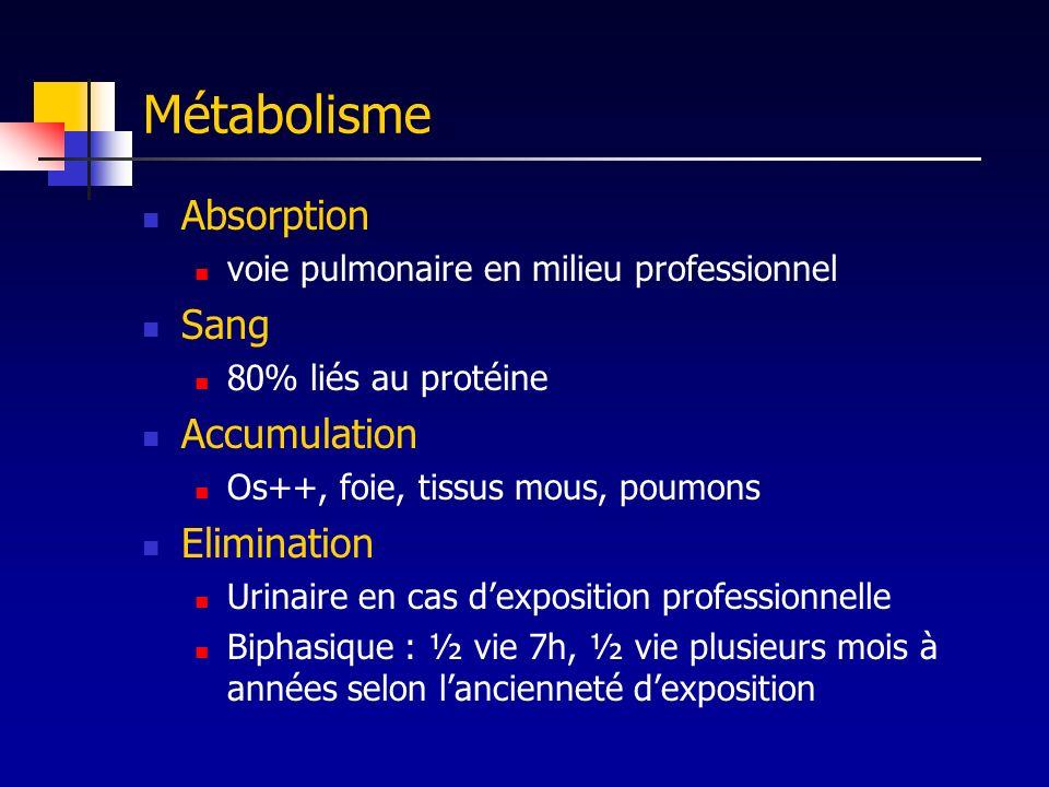Métabolisme Absorption Sang Accumulation Elimination