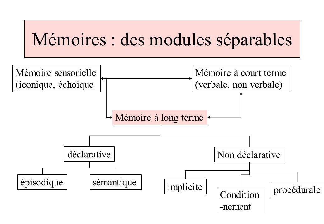 Mémoires : des modules séparables