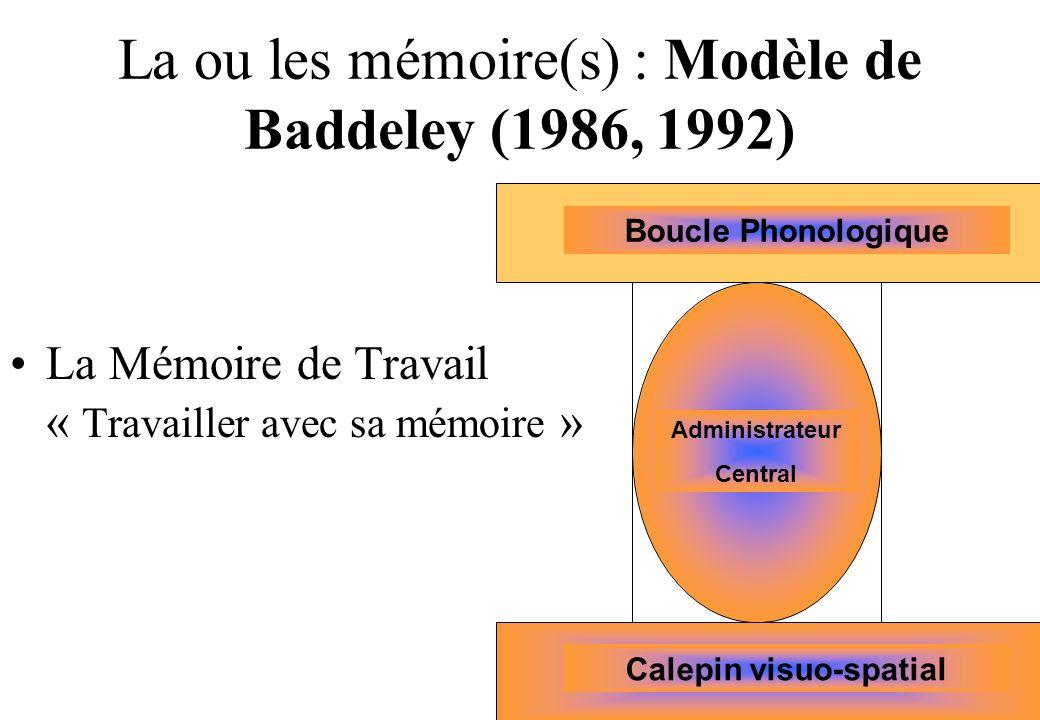 La ou les mémoire(s) : Modèle de Baddeley (1986, 1992)