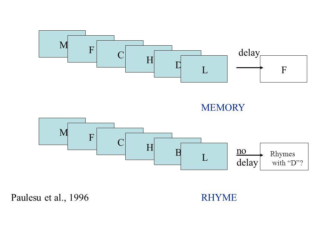 M F delay C H D L F MEMORY M F C H no delay B L Paulesu et al., 1996