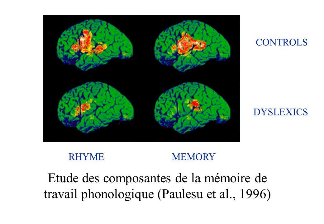 CONTROLS DYSLEXICS. RHYME. MEMORY.