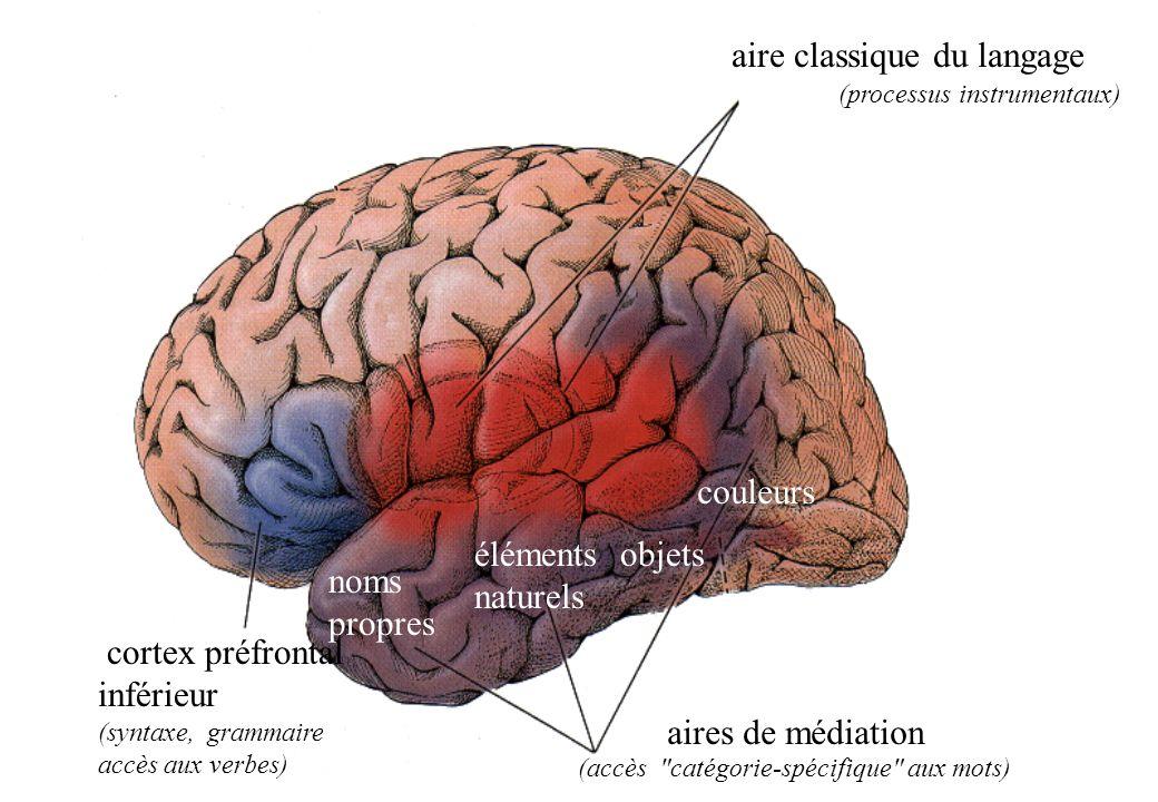 aire classique du langage