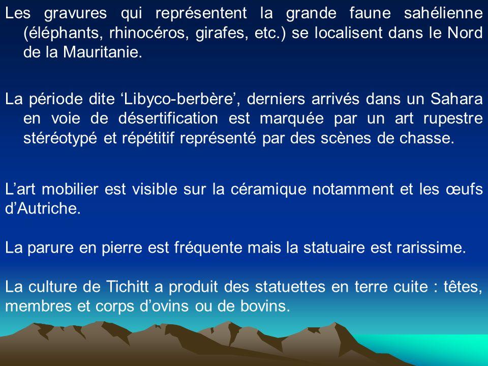 Les gravures qui représentent la grande faune sahélienne (éléphants, rhinocéros, girafes, etc.) se localisent dans le Nord de la Mauritanie.