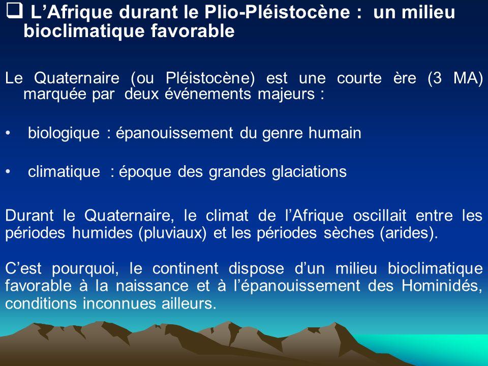 L'Afrique durant le Plio-Pléistocène : un milieu bioclimatique favorable
