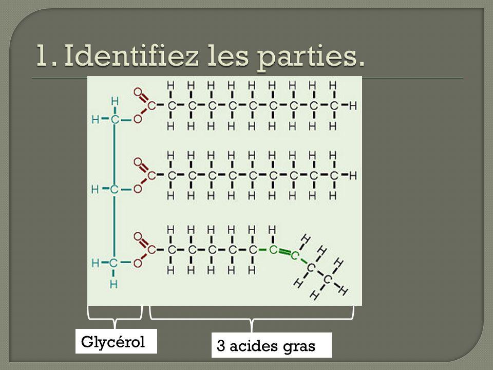Difference entre huile et graisse - Difference entre blender et mixeur ...