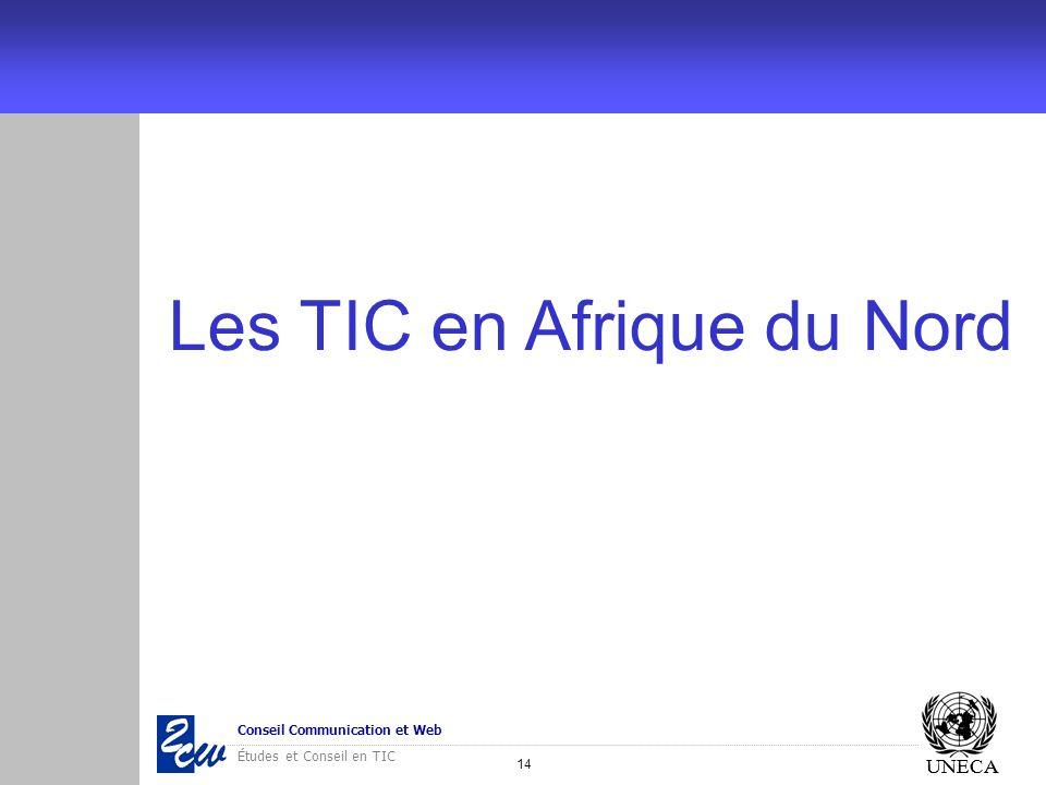 Les TIC en Afrique du Nord