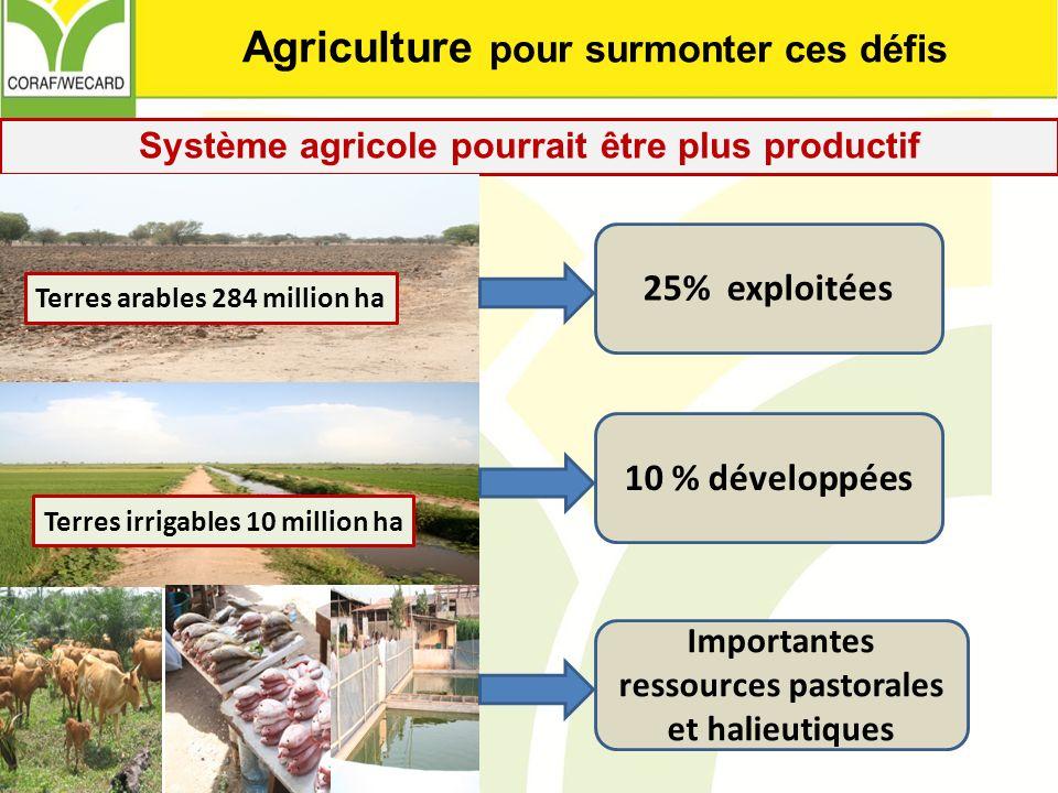 Agriculture pour surmonter ces défis