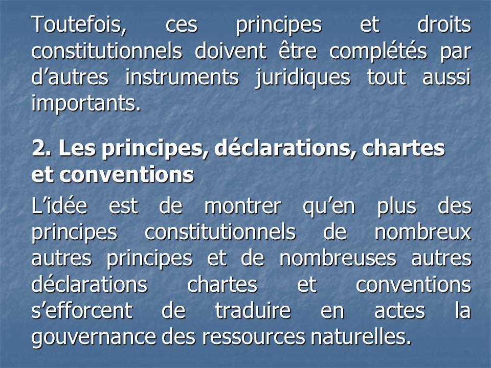 Toutefois, ces principes et droits constitutionnels doivent être complétés par d'autres instruments juridiques tout aussi importants.