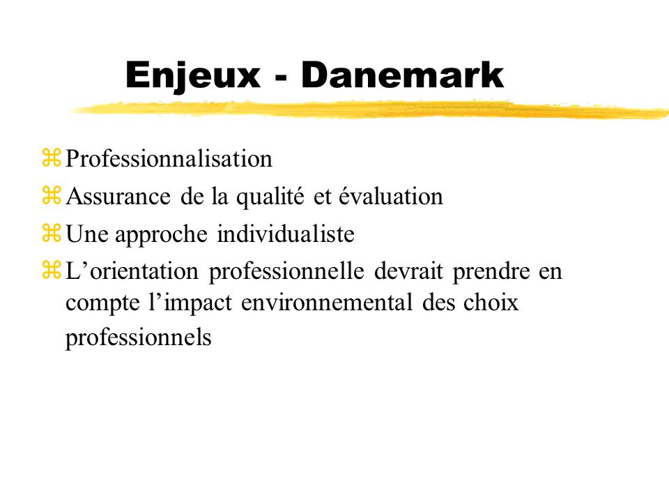 Enjeux - Danemark Professionnalisation