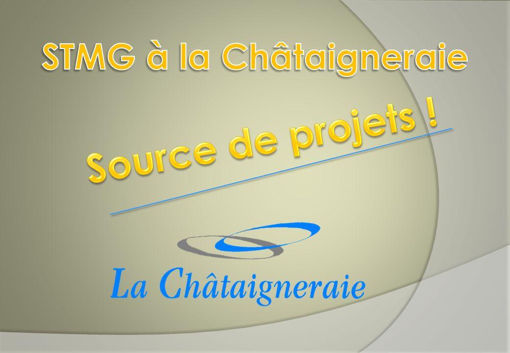 STMG à la Châtaigneraie
