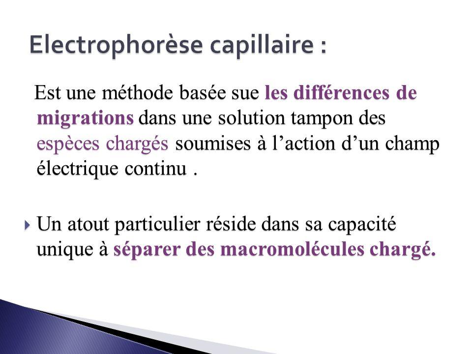 Electrophorèse capillaire :