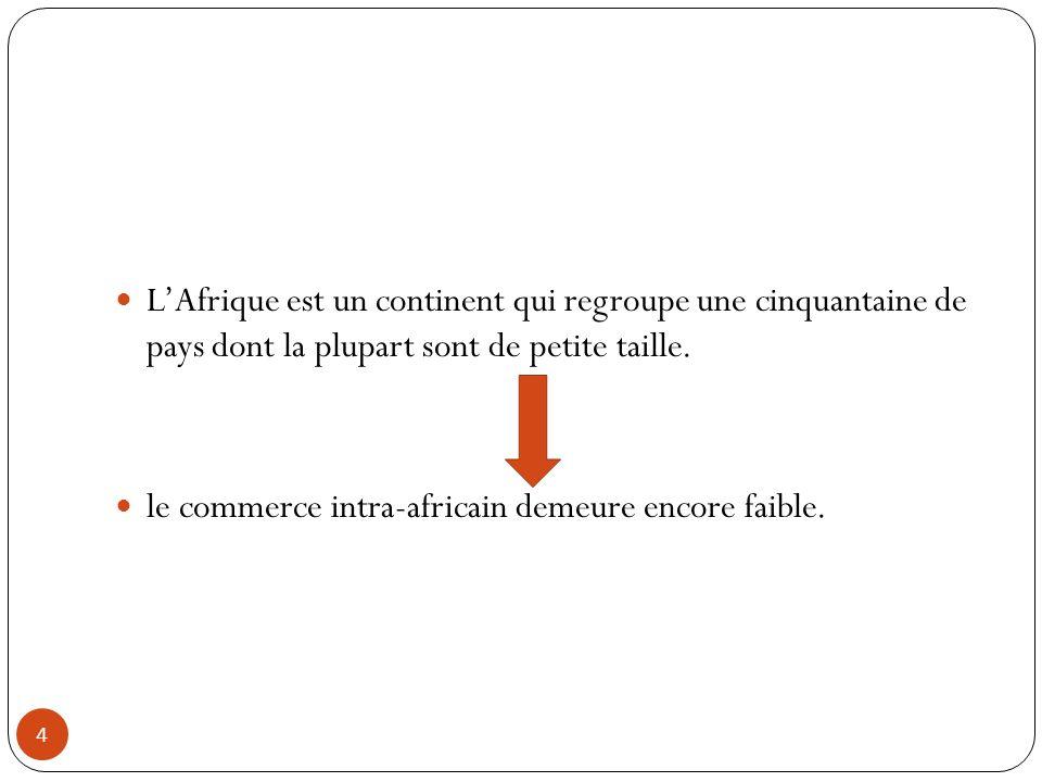 L'Afrique est un continent qui regroupe une cinquantaine de pays dont la plupart sont de petite taille.