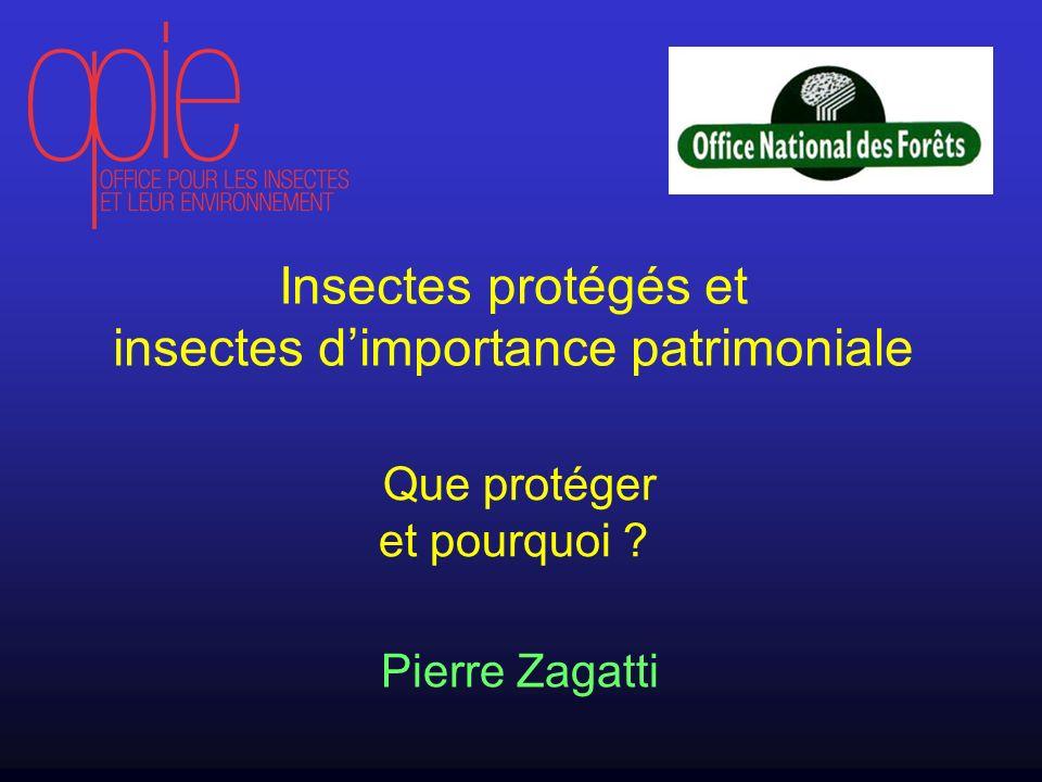 insectes d'importance patrimoniale