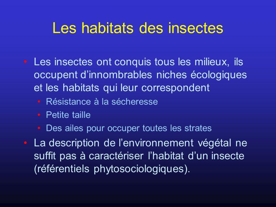 Les habitats des insectes