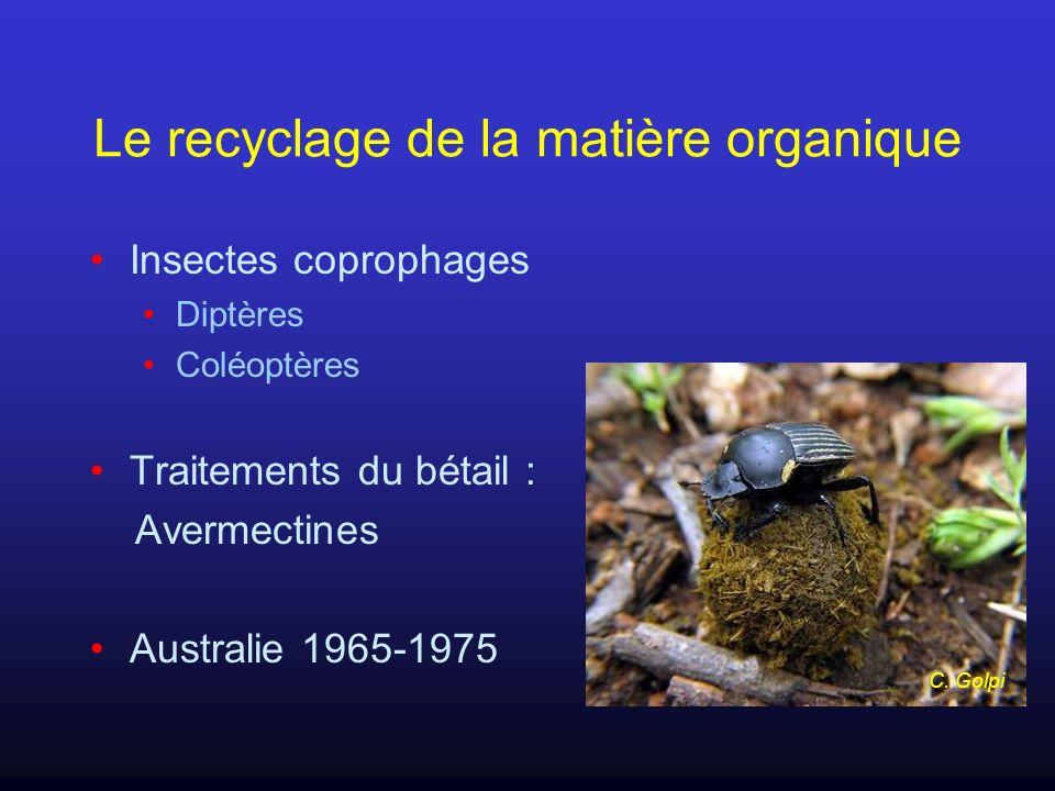 Le recyclage de la matière organique