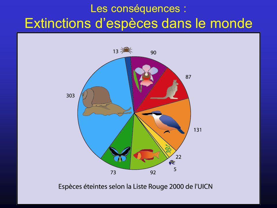 Les conséquences : Extinctions d'espèces dans le monde