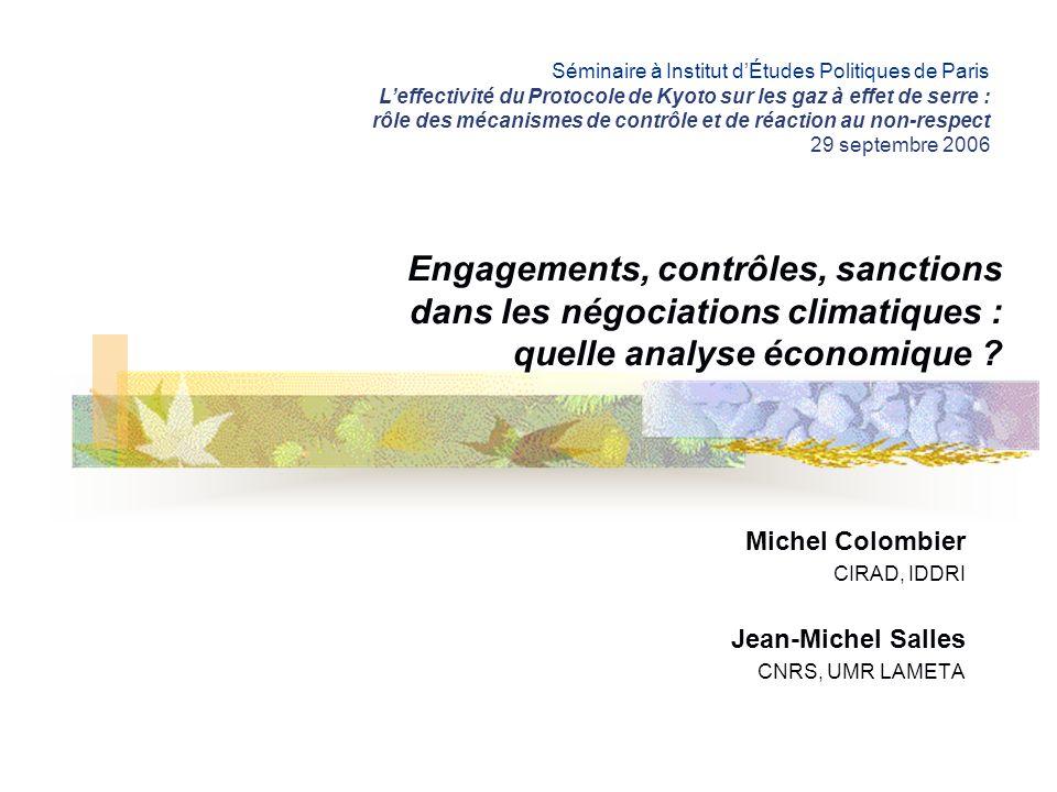 Michel Colombier CIRAD, IDDRI Jean-Michel Salles CNRS, UMR LAMETA