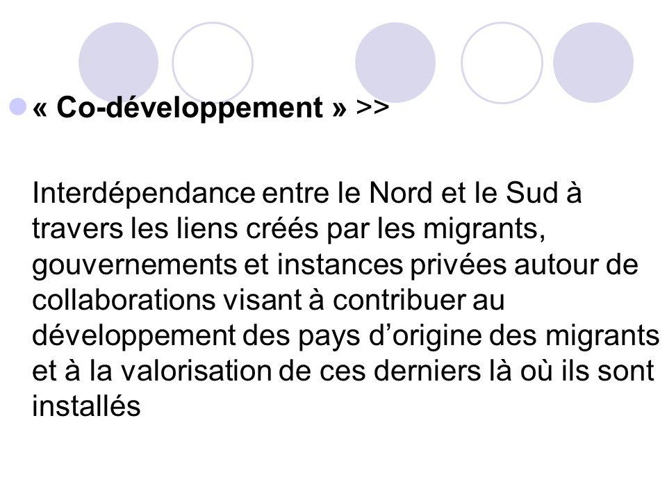 « Co-développement » >>