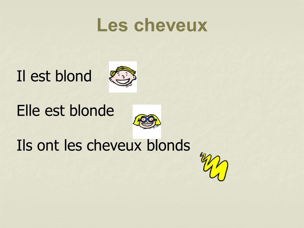 Il est blond Elle est blonde Ils ont les cheveux blonds