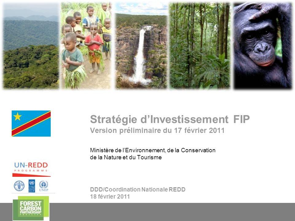 Stratégie d'Investissement FIP Version préliminaire du 17 février 2011
