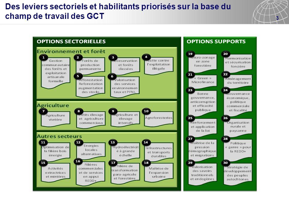 Des leviers sectoriels et habilitants priorisés sur la base du champ de travail des GCT