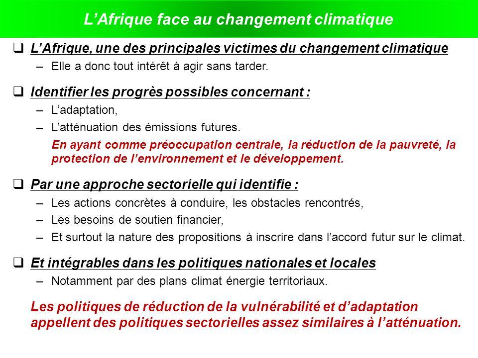L'Afrique face au changement climatique