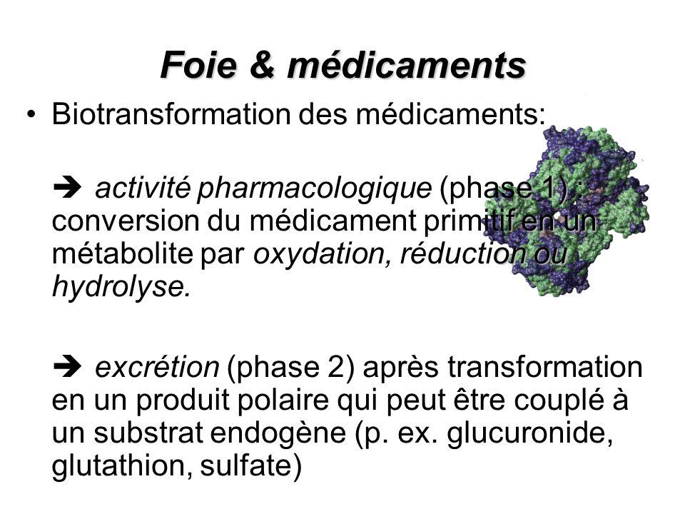 Foie & médicaments Biotransformation des médicaments: