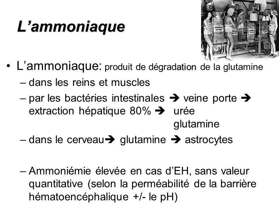 L'ammoniaque L'ammoniaque: produit de dégradation de la glutamine