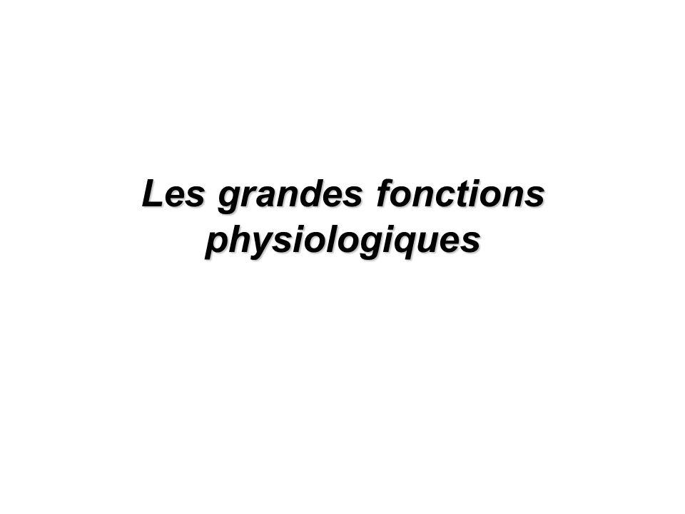 Les grandes fonctions physiologiques