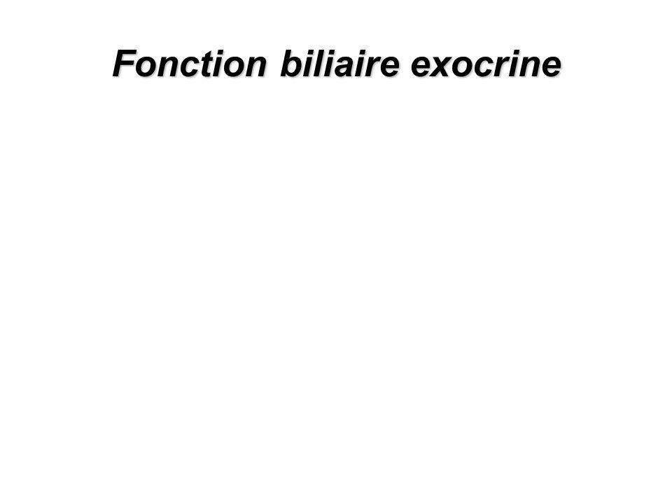 Fonction biliaire exocrine