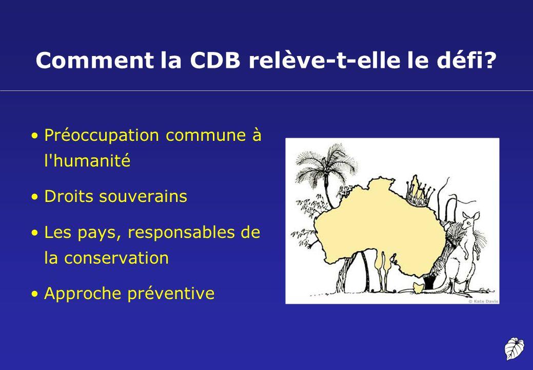 Comment la CDB relève-t-elle le défi